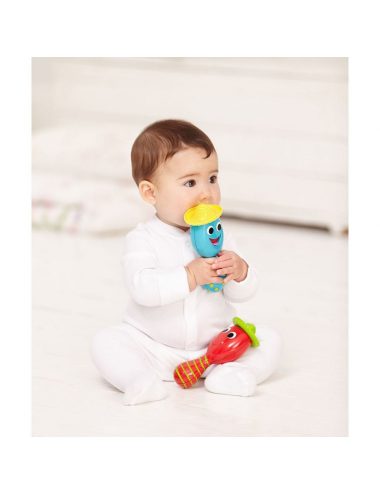 EARLY LEARNING CENTRE-FUN SINGING MARACAS SET